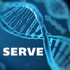 The Serve Gene – by TimAdcox