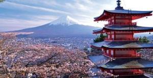View-of-Mt-Fuji