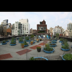 NY Mission Team and a Roof TopGarden